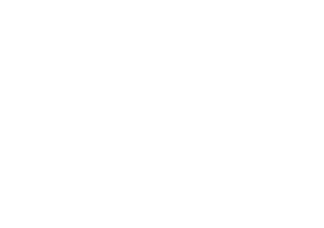 less-consulting-logo-footer